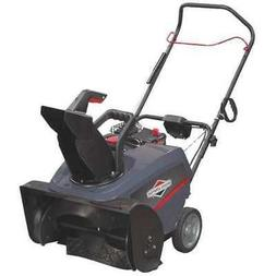 BRIGGS & STRATTON 1696715 Briggs & Stratton 22 in Single Sta