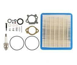 Carburetor Overhaul Carb Rebuild Air Filter Kit For Briggs &