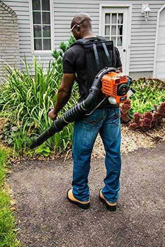 2 Gas Backpack Blower