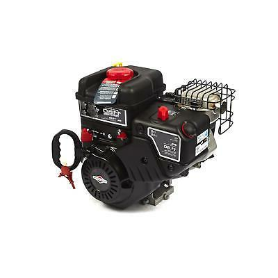 snow series 250cc horizontal engine